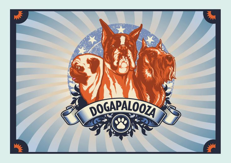Dogapalooza - Two of my favourite things brought together! Festivals and dogs.