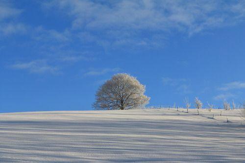 Scenery of Hokkaido