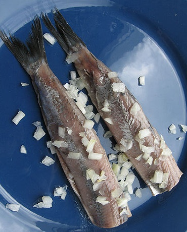 The first young haring of the season eaten raw with onions a Dutch delicacy.