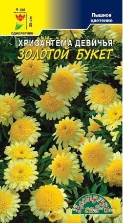 Хризантема Девичья Золотой Букет – Семена хризантемы