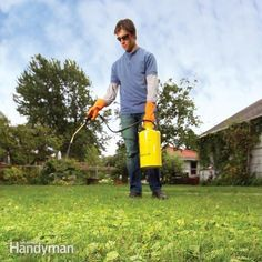 eliminate weeds in your lawn and prevent their return by maintaining healthy grass, using a minimum of weed killers and good timing. we show you six strategies that simplify weed control and reduce your weed patrol chore.
