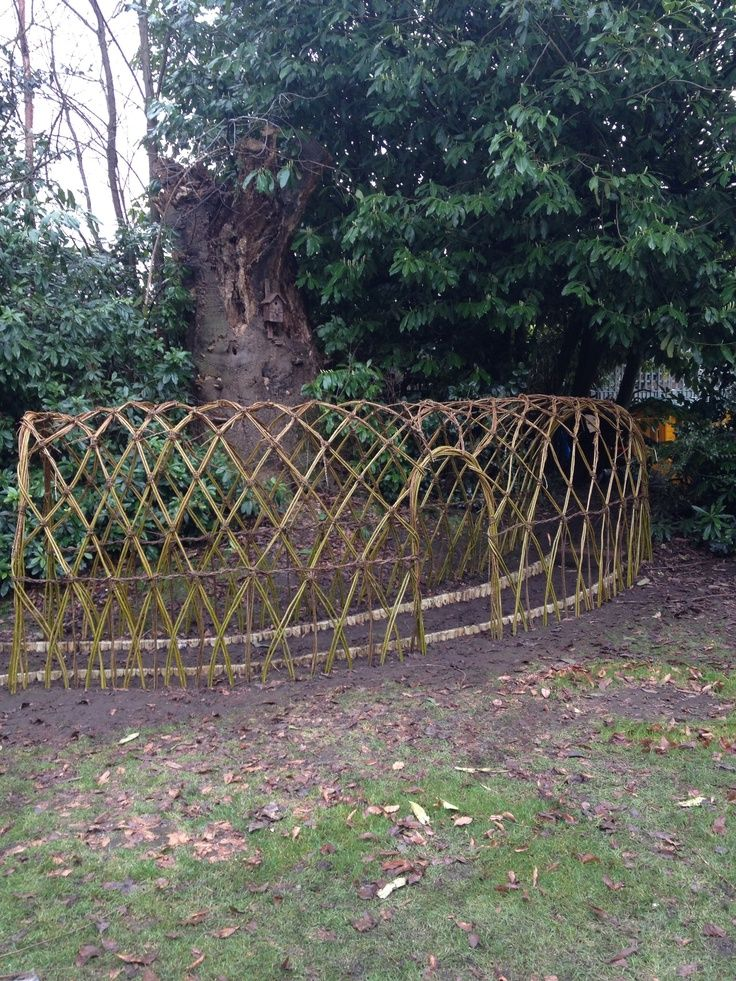 Living willow tunnel 230 best Fencing Ideas