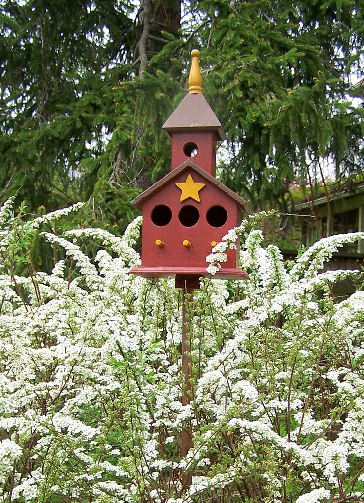 241 best birdhouse crafts fancy funky images on for Birdhouse project