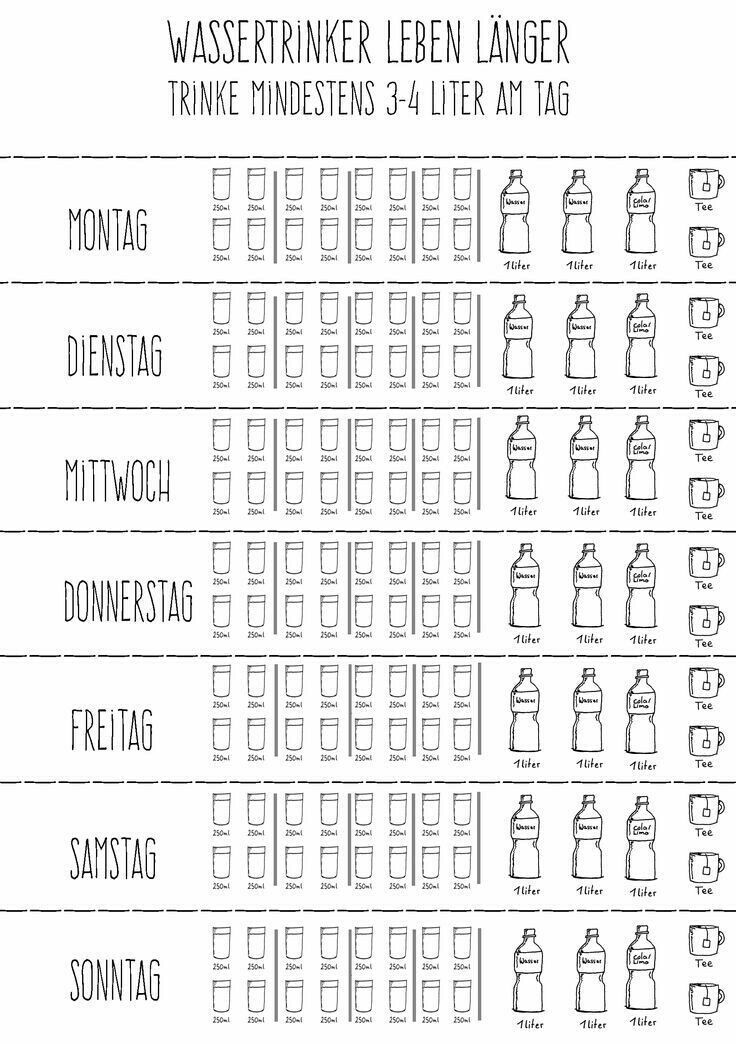 Essensplan Zum Abnehmen Vorlage Choose Your Level