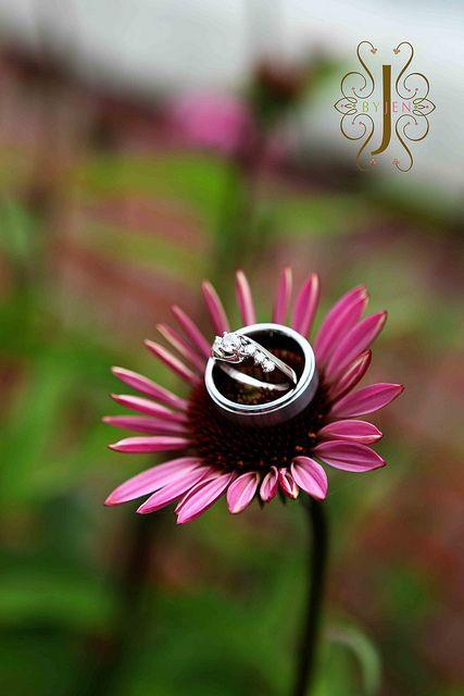 Wedding Rings :)