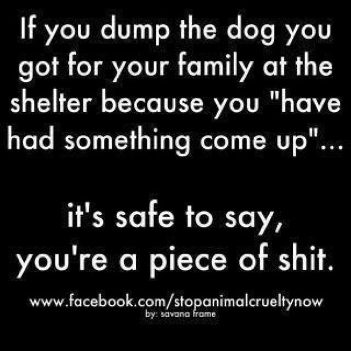 "Amen!!  A bit of a rough way of saying it...but nothing pisses me off more than people dropping their dogs off at the shelter because ""the kids are allergic to it.""  If your kids are allergic to dogs....STOP BUYING/ADOPTING DOGS!"