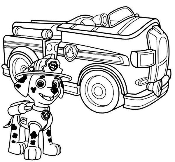 Coloriage Marcus Pat Patrouille Monster Truck Drawing Paw