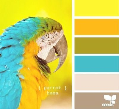 Parrot hues color palette.  Bright yellow, Orange-yellow, Green-yellow, Teal, Linen & Beige