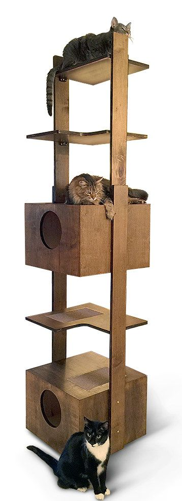 Made in the USA from 3/4 premium select cabinet grade birch by craftsman with 25 years experience.  Handcrafted - Sturdy - Safe - Made to Order piece of furniture - Ships from USA - Replaceable Sisal Scratching/Napping Pads for each Level. A Lower and an Upper Beddy Box. For any questions, info.purrfectrends@cox.net.  This tower provides great exercise for your cat. It supports 25 lbs. per level, is furniture finished and can accessorize any decor. It is easy to keep clean and is ea...