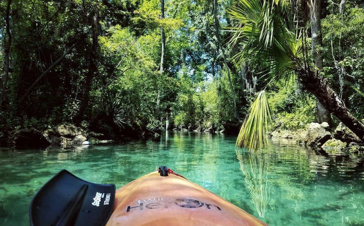 Kings Bay  Place to rent: Crystal River Kayak Company and Dive Center