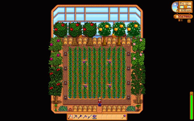 I just unlocked the greenhouse, does anyone have any advice on the layout? : StardewValley