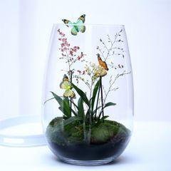 Zelf maken: minituin in vaas. Lees het stappenplan op onze site.