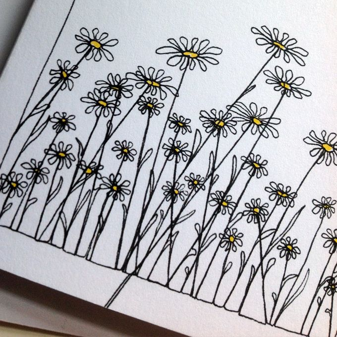 Continuous Line Drawing Of A Flower : Best flower sketches ideas on pinterest