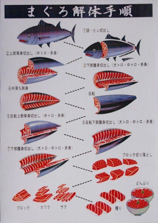 まぐろ解体手順 process of disassembling tuna