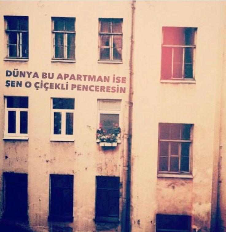 Dünya bu apartman ise, sen o çiçekli penceresin
