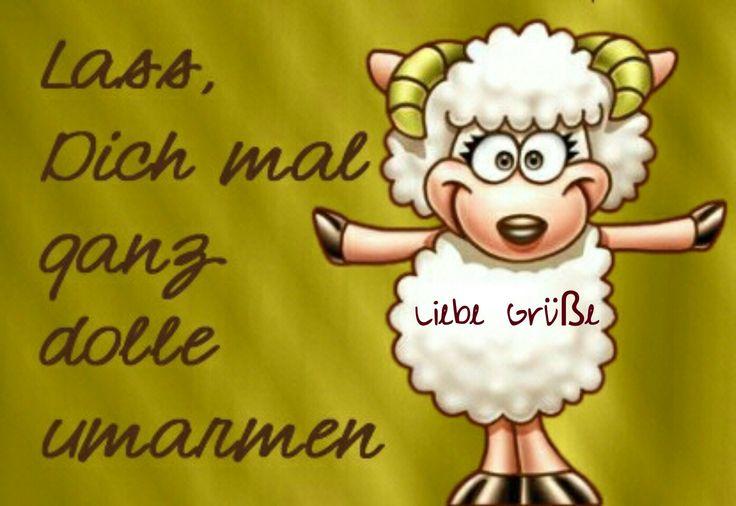 Das etwas andere Schaf