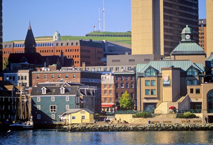 Halifax is the kind of town that people flock to, not so much for the opportunities, but for the quality of life it has to offer. Sea breezes off...