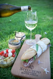 @Holly Engstrom Hotel & Winery in Cape Town, South Africa - vineyard picnic