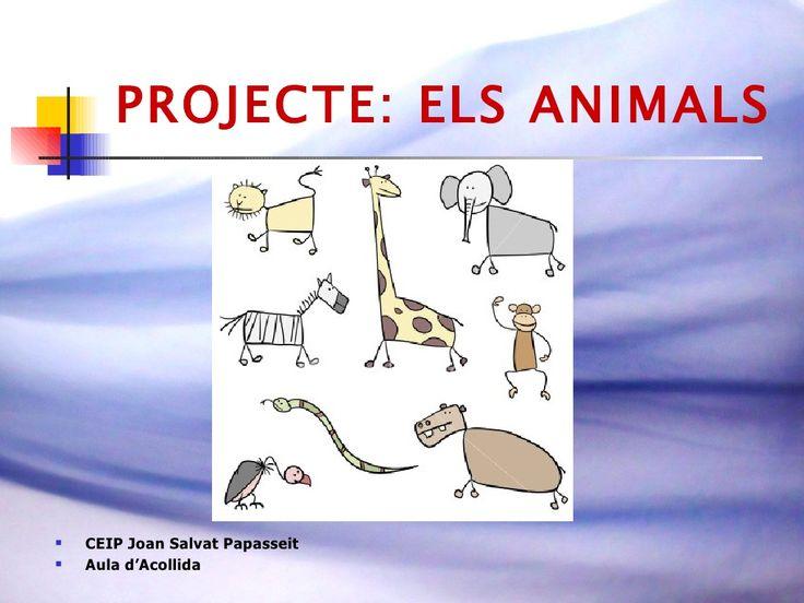 Projecte Animals Fitxes