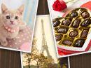 Valentine Quiz Interactive Valentine's Day eCards
