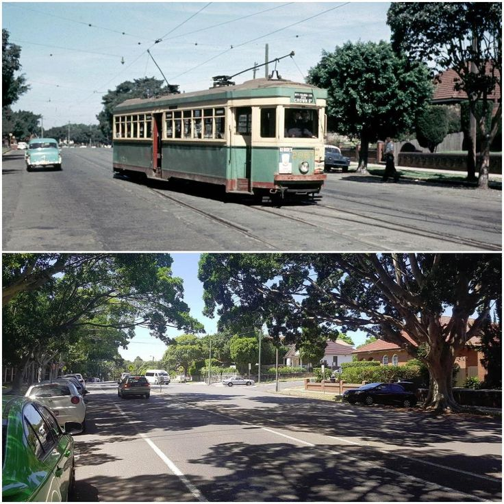Sydney tram on Todman Avenue, Kensington 1959 > 2017. [Trams Down Under > Nick Haritsos. By Nick Haritsos]