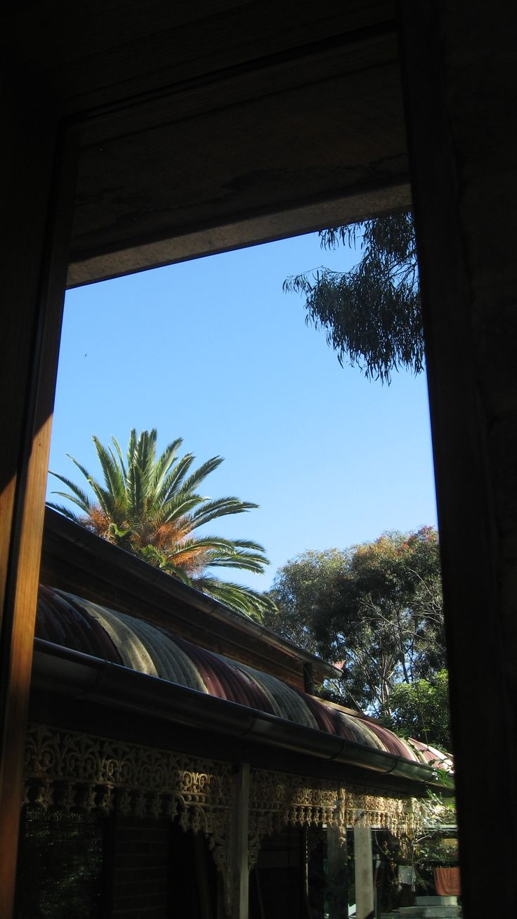 New west facing window with views of the existing residence + ancient date palm