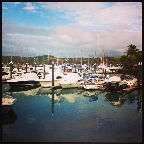 Good morning @hamiltonisland. Another GLORIOUS day #return2paradise #seeaustralia. Adventure on the high seas!