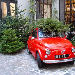113 Best Trees On Cars Images On Pinterest Christmas Time  - Christmas Tree On Car