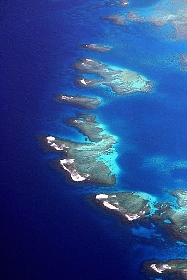 Bird's eye of Tonga. Sailed this archipelago for three days. We visited uninhabited islands and snorkeled pristine reefs where we swam with fish of every size, color and shape imaginable. It was the experience of a lifetime.