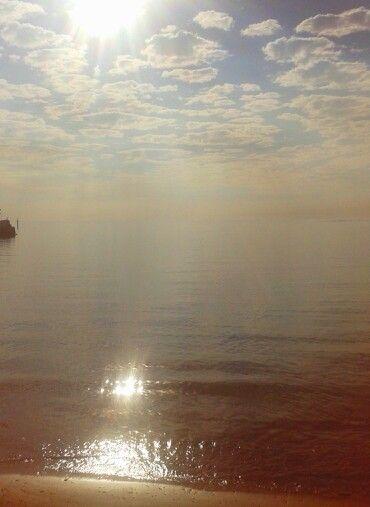 la mar dorada IX