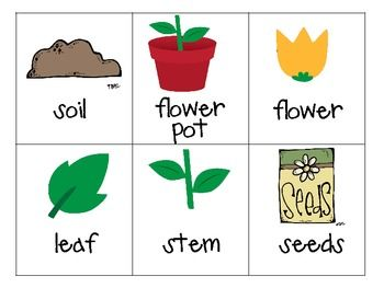 Spring Plants and Flowers Unit!  In this unit, you will find 79 pages of math and literacy, science, and writing center activities and printables including:  capital/lowercase letters, writing prompts, dice games, number order, patterns, roll and race to 100, and more!  $