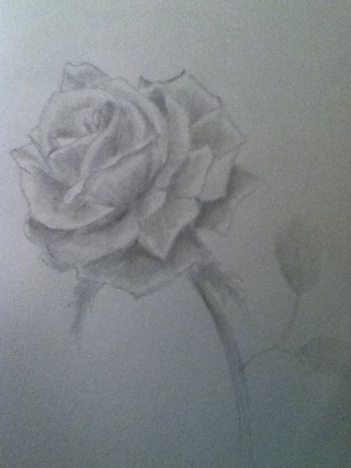 38 best how to draw images on pinterest drawing tutorials art how to use shading techniques how to draw lipsroses ccuart Image collections