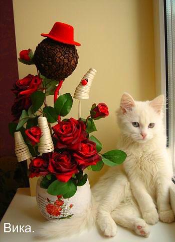 http://ok.ru/profile/561330617521/pphotos