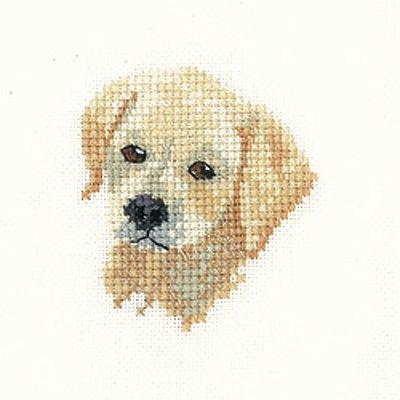 Labrador Puppy – Little Friends Cross Stitch Kit By Heritage Crafts