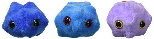 Giant Microbes Common Cold Rhinovirus Petri Dish Giant Mi... https://smile.amazon.com/dp/B00157K9C6/ref=cm_sw_r_pi_dp_U_x_RADIAb5GF81H4