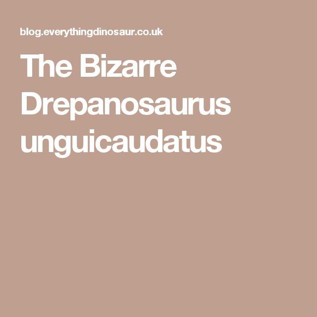 The Bizarre Drepanosaurus unguicaudatus