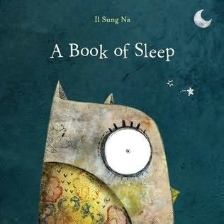 A Book Of Sleep by Il Sung Na. Great read-a-loud...have children see if they can spot the owl hidden throughout the story; great illustrations.