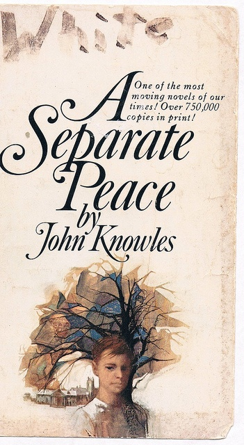 a literary analysis of a separate peace by john knowles The paperback of the a separate peace (sparknotes literature guide series) by sparknotes, john knowles | at barnes & noble  an a+ essay—an actual literary essay.