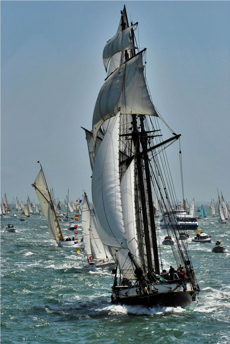 Tous les 2 ans a lieu la Semaine du Golfe. Un grand rendez-vous nautique qui rassemble dans le Golfe du Morbihan, une armada de vieux bateaux classiques venant de tous les coins du monde.