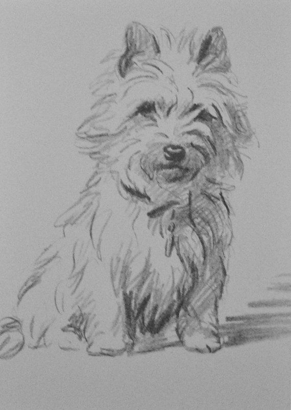 Cairn terrier hond Vintage gemonteerd 1936 'Mac' door Hollysprints