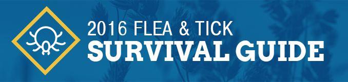 Flea & Tick Survival Guide