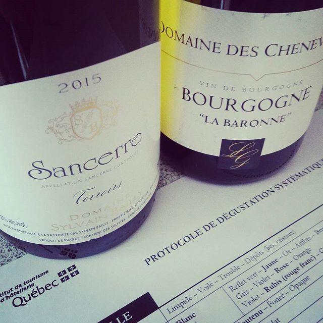Pour #vendredi j'ai choisi 2 #vins pour une pratique de mon Protocole de #degustation que je vais effectué lundi en exam...