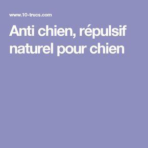 Anti chien, répulsif naturel pour chien