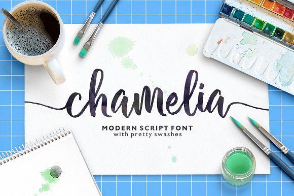 Chamelia Script by Area Type Studio on @creativemarket