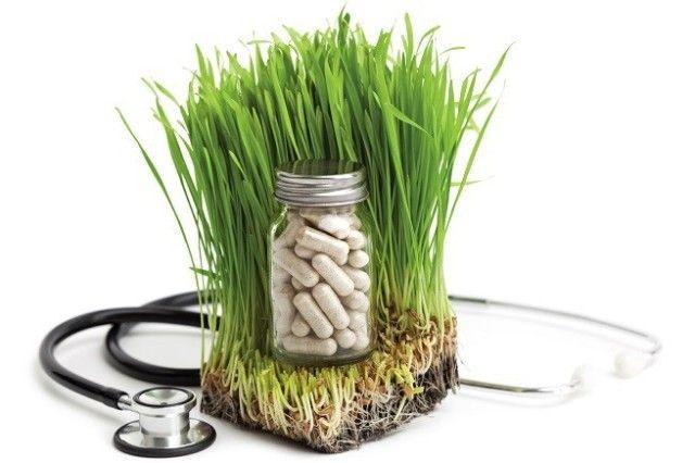 Il rapporto The WHO Traditional Medicine Strategy 2014-2023 sollecita gli Stati a integrare le medicine complementari nei sistemi sanitari nazionali facilitandone l'accesso a tutti. L'organizzazione Mondiale della Sanità ha pubblicato l'ultimo...