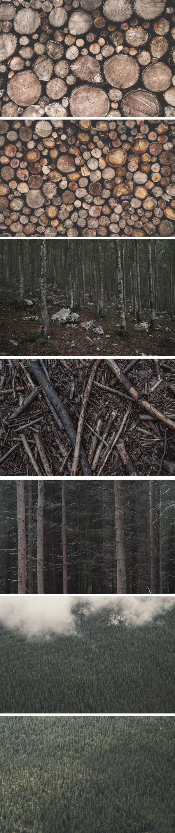 Here is another collection of high-resolution photos of wood and forests I've put together for you guys. Just as the previous...