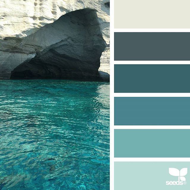 today's inspiration image for { color adventure } is by @nathalierollandin ... thank you, Nat, for another inspiring #SeedsColor image share!