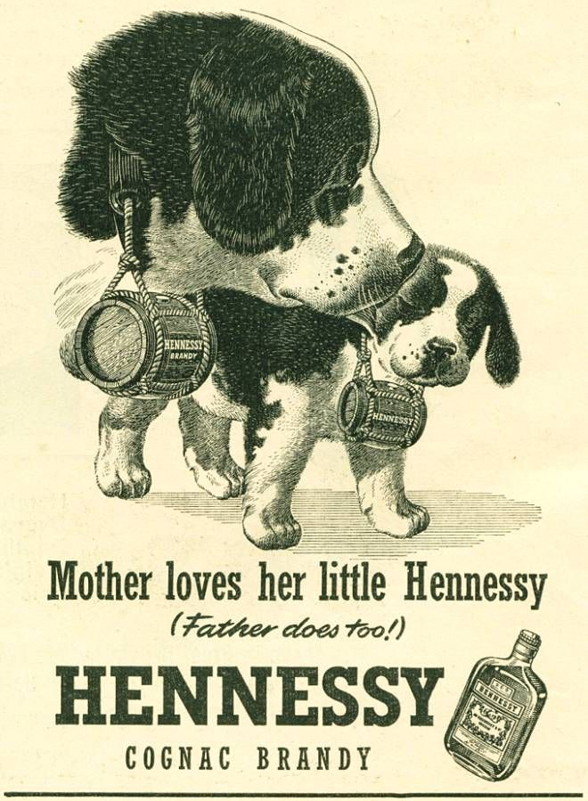 Vintage 1954 ad for Hennessy brandy using Saint Bernards