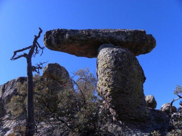 58 Best Willcox Arizona Images On Pinterest Benson