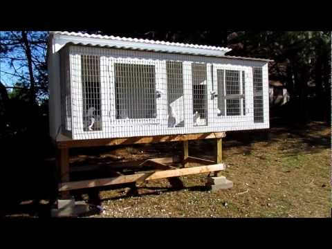 CoopCast Show #8 - Speaking about Pigeon Coops